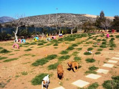 Πάρκο σκύλων στην Ηλιούπολη - Φωτογραφία από την επίσημη σελίδα του δήμου